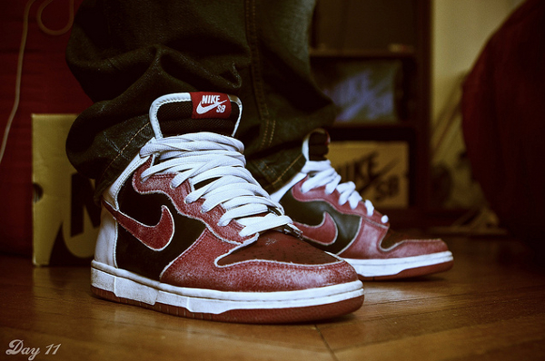 nike-dunk-low-sb-jason-SylVNR