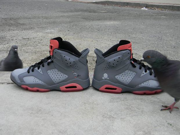 Air Jordan 6 NYC Pigeon