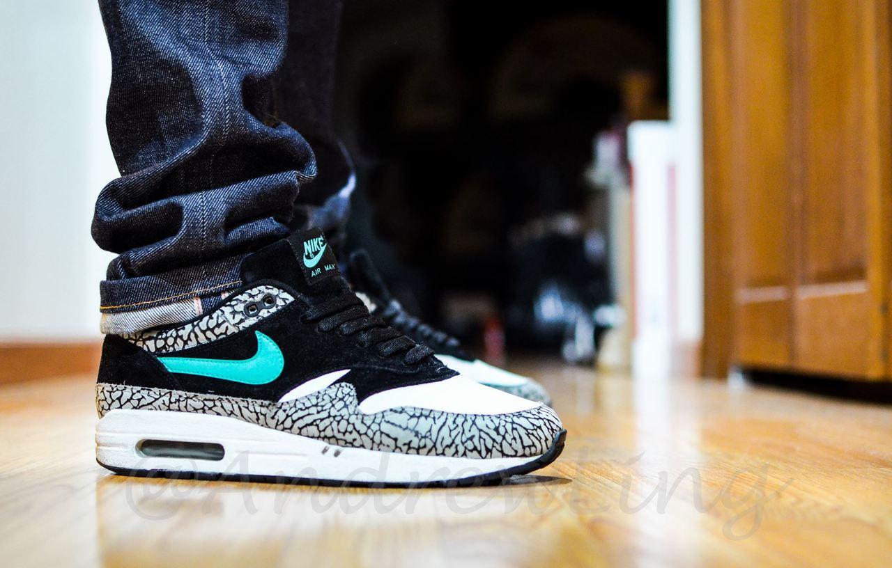 air max one atmos curry