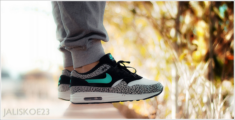 air max 1 premium atmos elephant safari