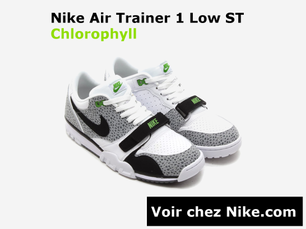 banniere-air-trainer-low-st-chlorophyll