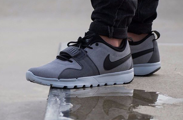 Nike Sb Trainerendor Leather