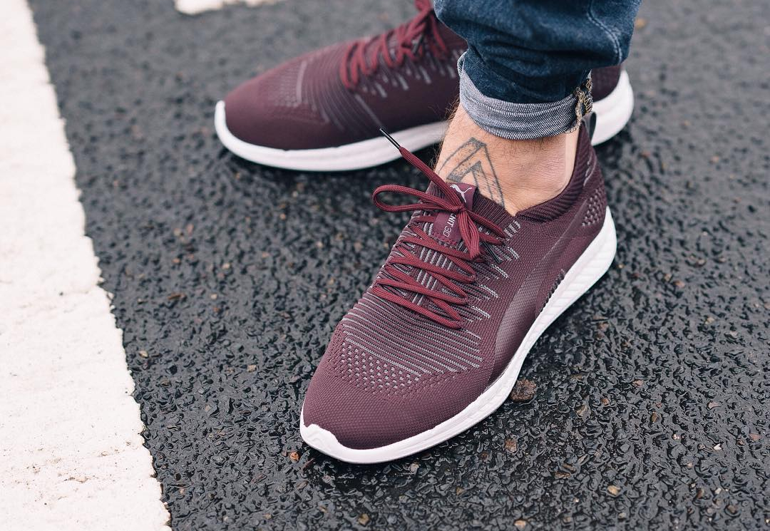 Puma Ignite Evoknit Bordeaux