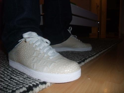 adidas-gazelle-gator