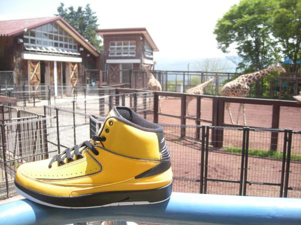 Air Jordan 2 Candy