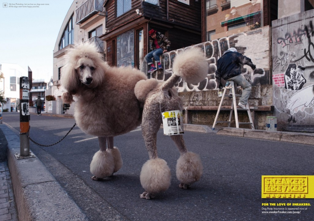 Sneaker Freaker Dog Poop
