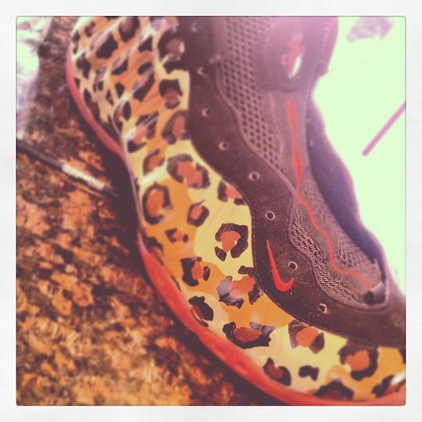 Nike Air Foamposite Leopard