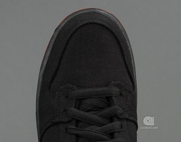 Nike Dunk Low SB Denim x Levis
