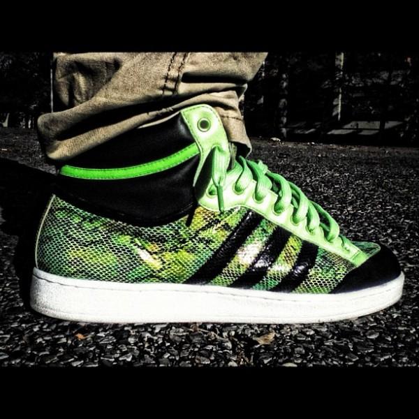 Adidas Americana Snakeskin - Pito