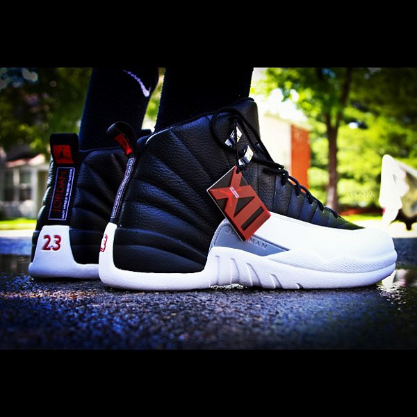Air Jordan 12 Playoffs - Valentino Savant