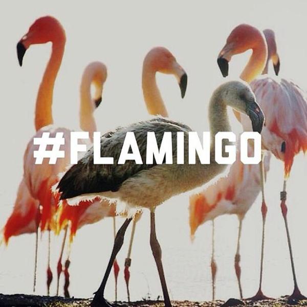 Asics Gel Lyte 3 RF Flamingo