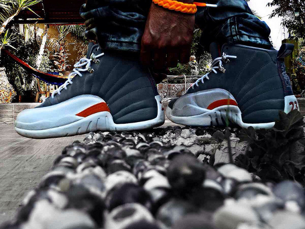 air-jordan-12-cool-grey-psycollector2011