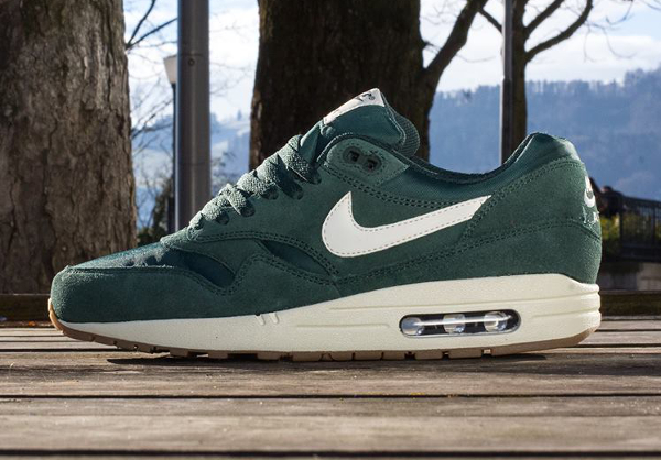 Nike Air Max 1 Essential Suede printemps 2014 (3)