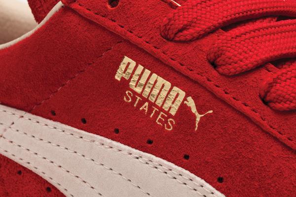 Puma States Invade (3)