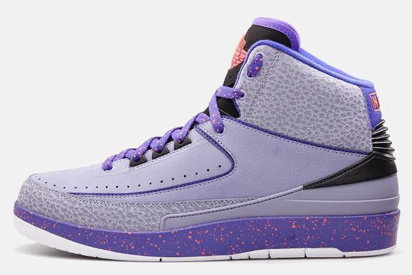Air Jordan 2 Iron Purple  (1)