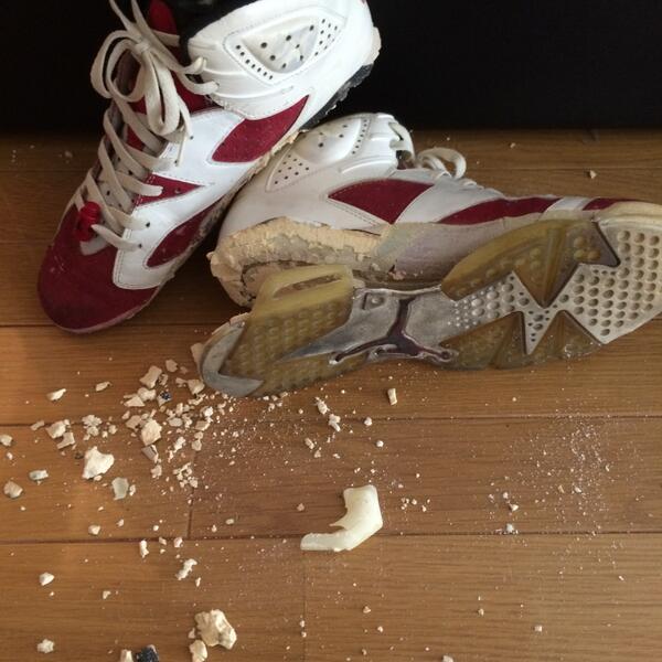 Air Jordan 6 Carmine OG decomposition (1)