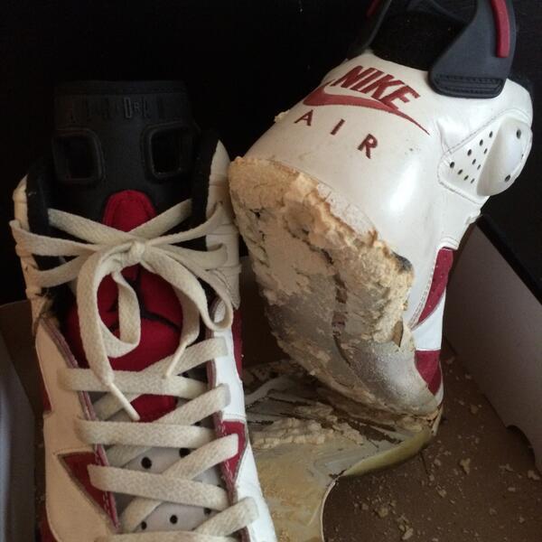 Air Jordan 6 Carmine OG decomposition (4)