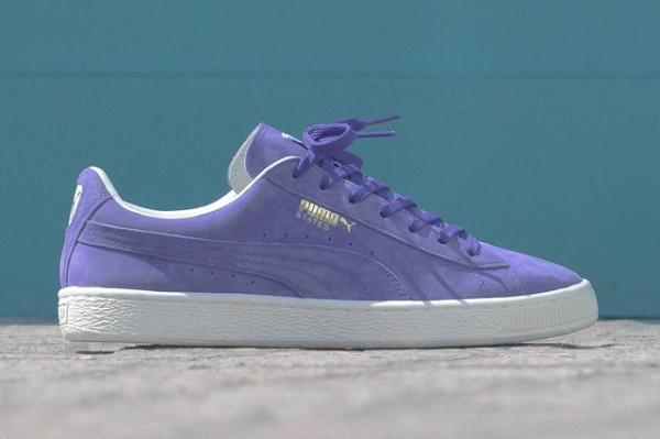 Puma States prism violet 'Summer Cooler' (2)