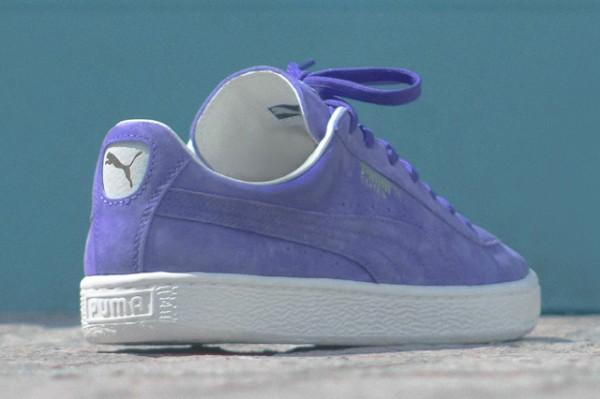 Puma States prism violet 'Summer Cooler' (3)