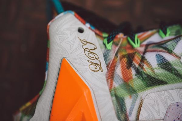 Nike Lebron 11 What The Lebron joli cliche (5)