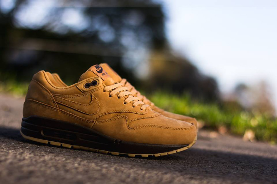 Nike Air Max 1 Flax Wheat (5)