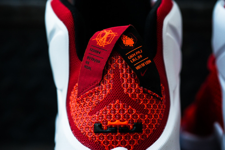 Nike Lebron 12 Coeur de Lion (6)