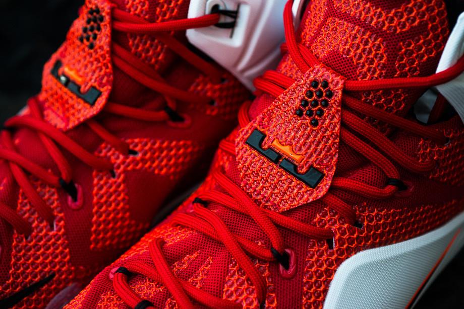 Nike Lebron 12 Coeur de Lion (8)