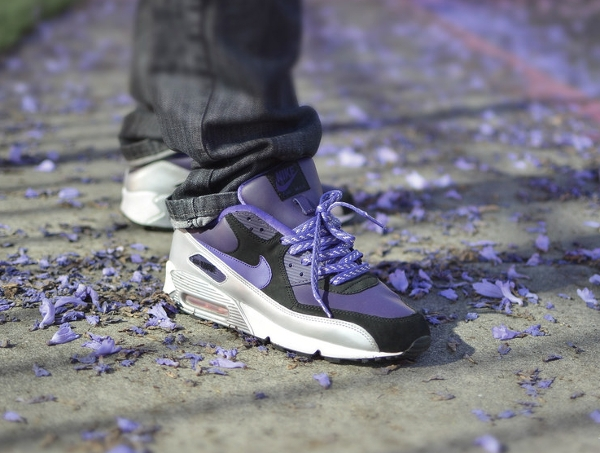 Nike Air Max 90 Purple Silver -  Aeropooch (1)