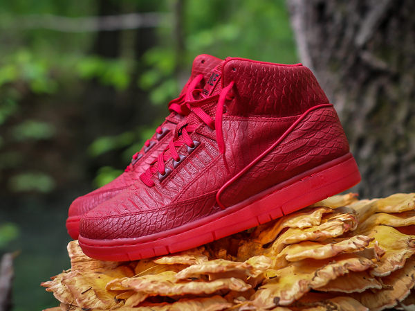 Nike Air Python Gym Red October (rouge) (1)