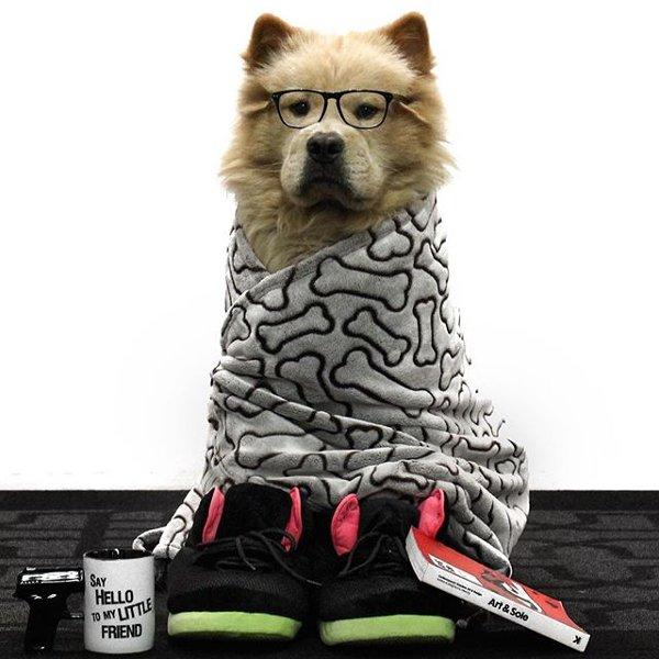 sneaker comedy club mars 2016 (8)