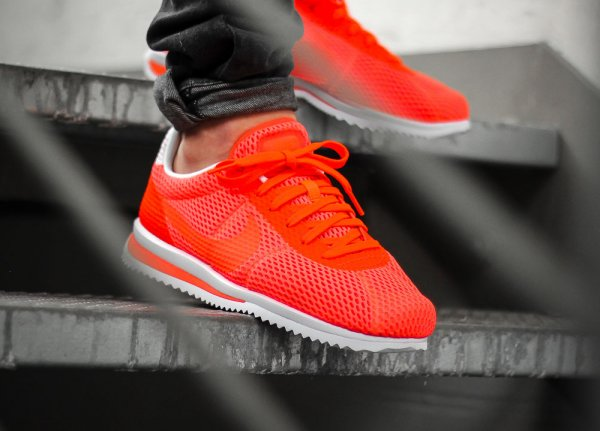clearance sale good selling cheapest new zealand nike cortez homme white ab8b6 4c871