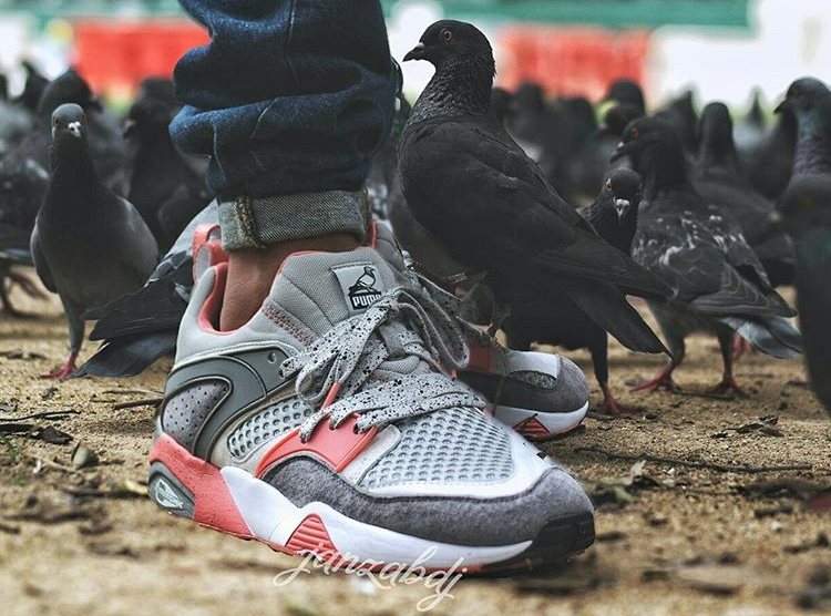 staple-x-puma-blaze-of-glory-pigeon-janzabdj