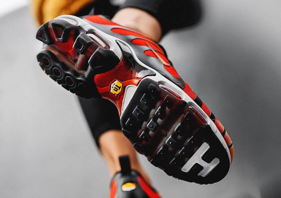 Nike Air Max Plus Tiger - @o5moroz