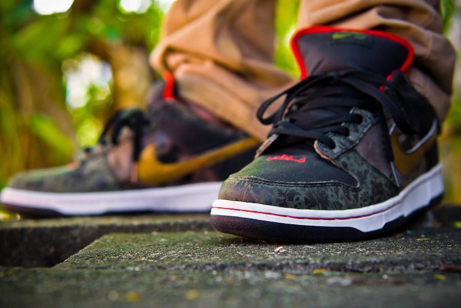 nike-dunk-low-sb-sbtg-on-feet