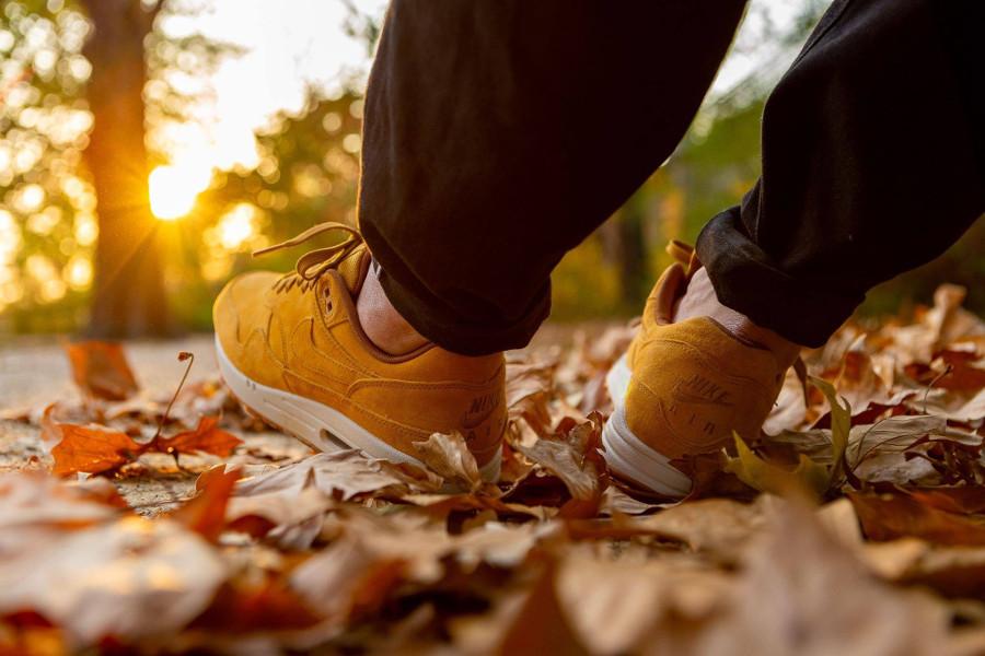 Nike Air Max One blé beige clair et marron on feet (2)