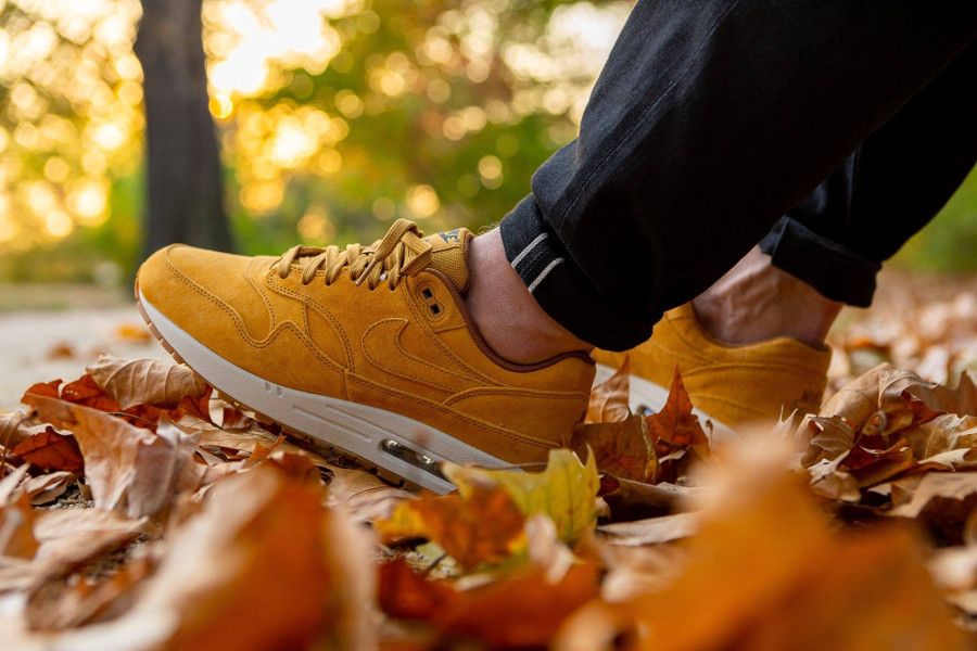 Nike Air Max 1 Premium Wheat 2018