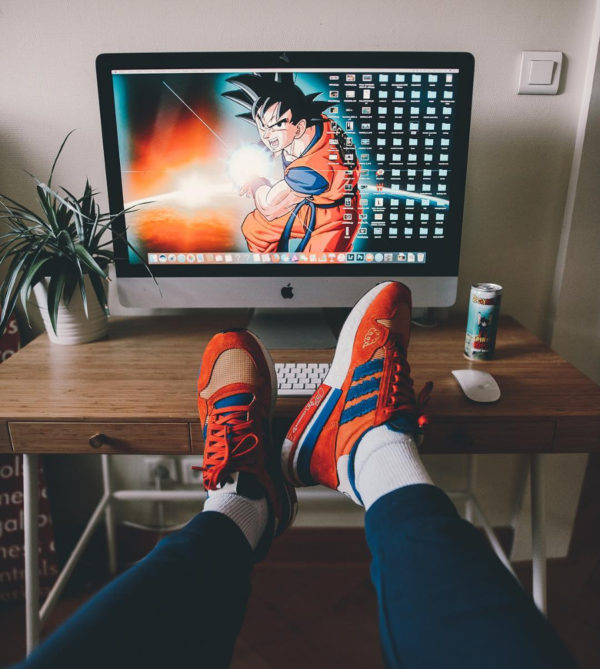 Adidas ZX 500 RM Goku - @makephoto