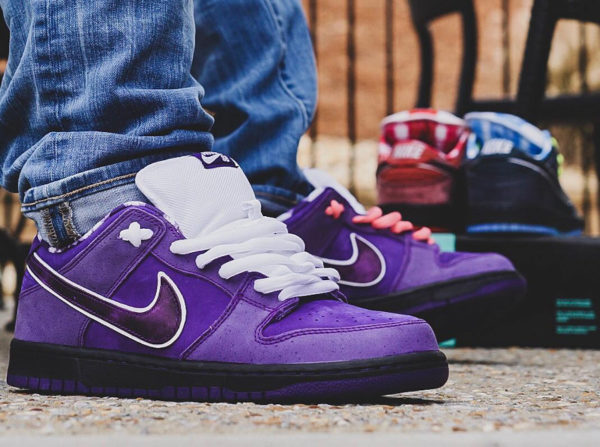 Concepts x Nike Dunk Low Pro SB 'Purple Lobster' on feet (3)