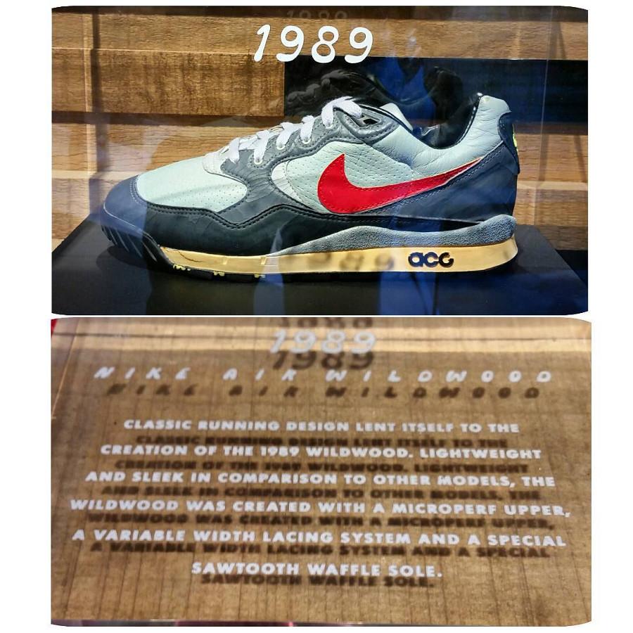 Nike Air Wildwood ACG OG vintage 1989