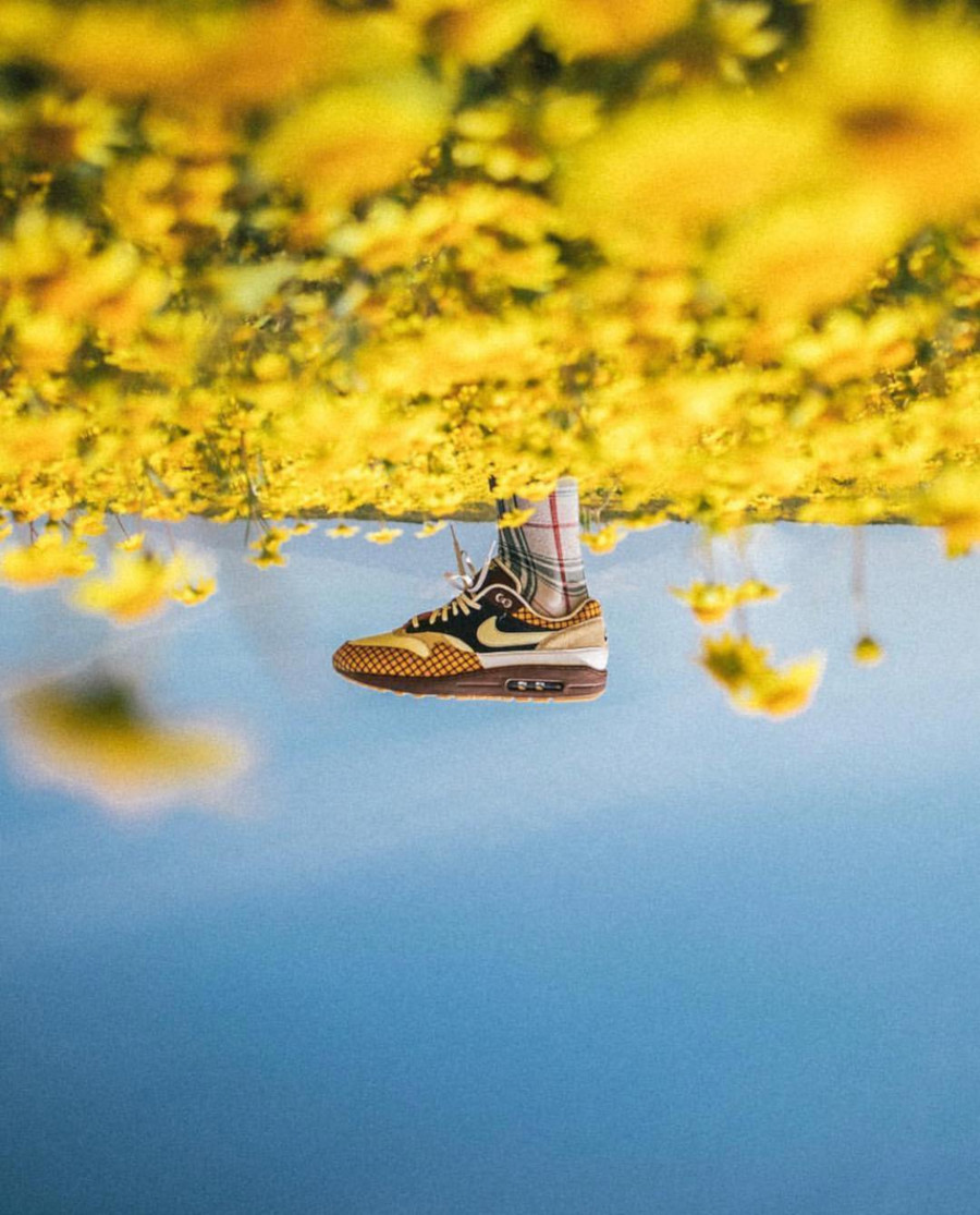 Laika x Nike Air Max 1 Susan Missing Link (1)