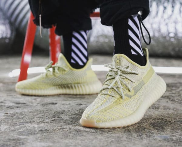 Adidas Yeezy Boost 350 V2 Antlia Region Exclusive on feet (1)