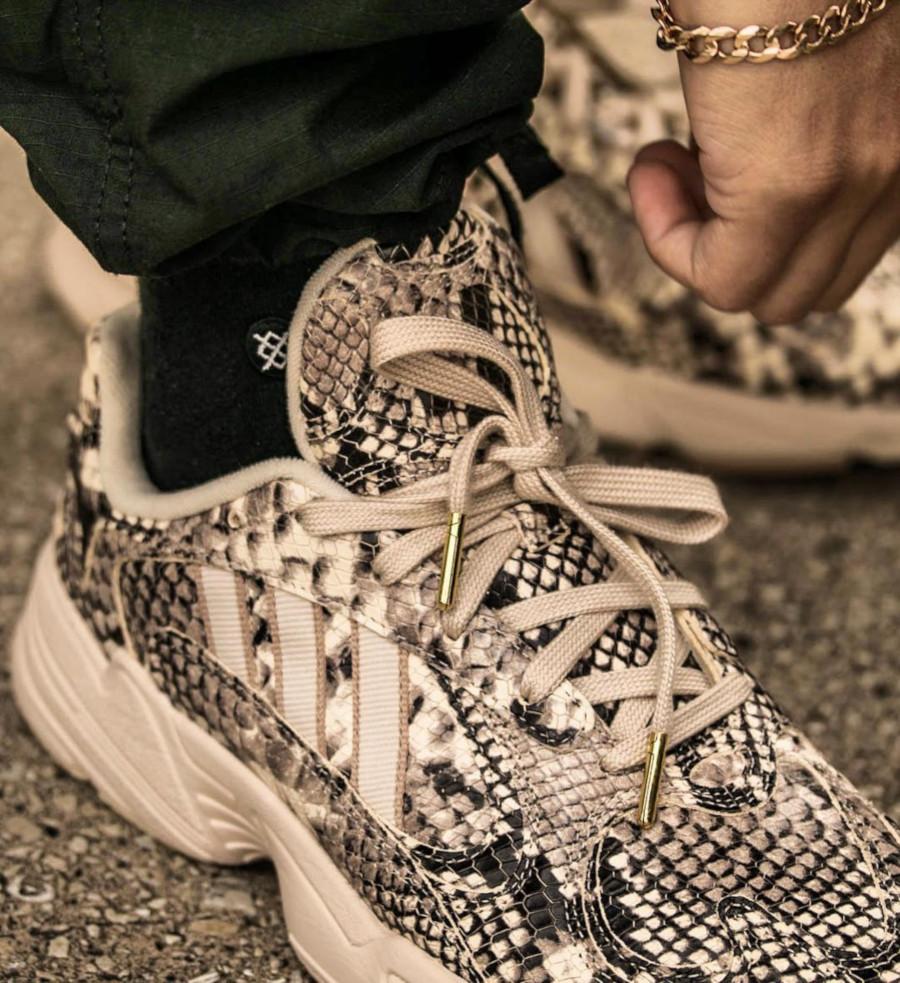 Adidas Yung 1 Falcon Dorf imprimé serpent beige (3)
