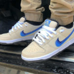 Nike SB Dunk Low Pro 'Truck It'