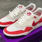 Nike SB GTS Return Premium x Nike Air Max 1 OG Red