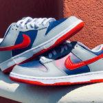 Nike Dunk Low Samba 2020
