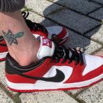 Nike Dunk Low Pro SB Chicago Bulls
