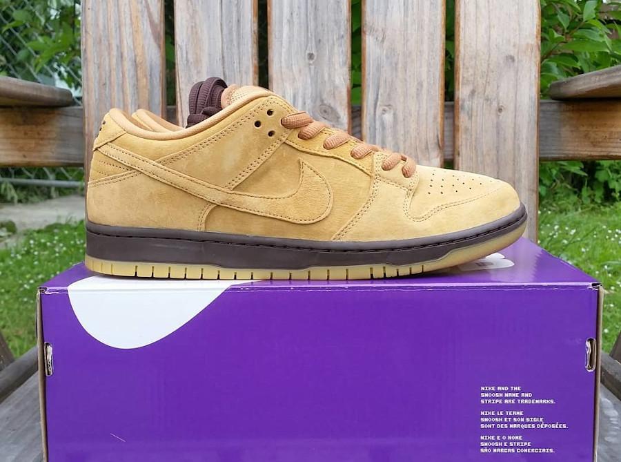 Nike Dunk Low Pro SB 2020 en daim marron (6)