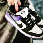 Nike Dunk Low Pro SB Court Purple