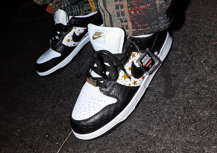 Nike Dunk Lo SB Pro blanche et noire DH3228-102 (2)
