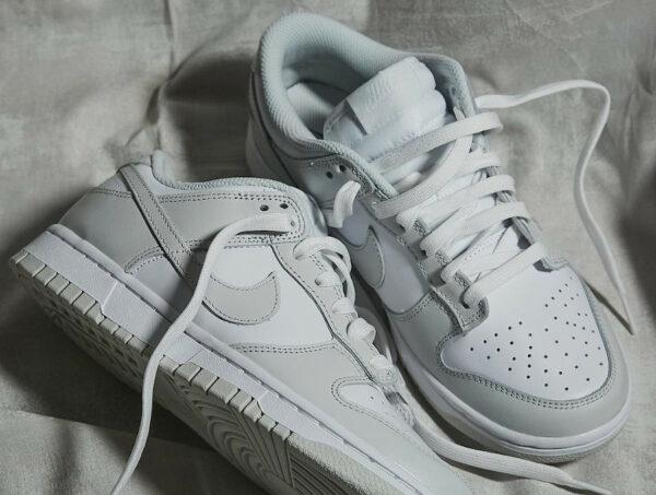 Nike Wmns Dunk Low 2021 Grise Photon Dust (couv)
